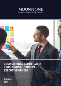 Professional Principal Executive Officer 2019 Brochure
